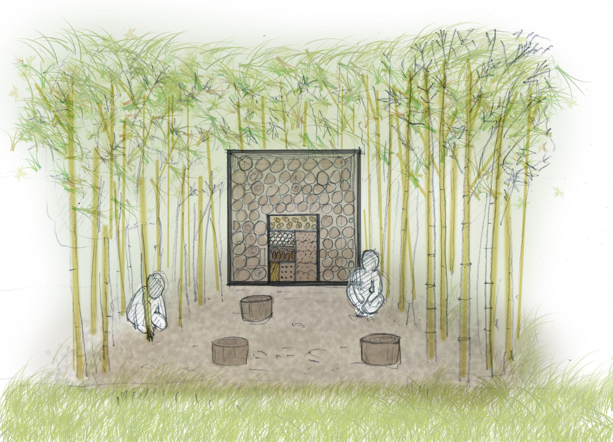 pohled do bambusu